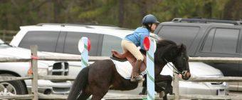 Horse & Pony Rally