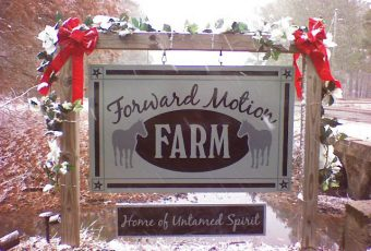 New Beginnings Forward Motion Farm